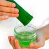 Какова польза биостимулированного сока алоэ?