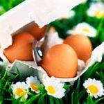 Яичные маски для лица сделают кожу красивой и здоровой