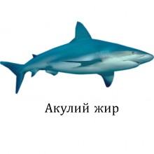 акулий жир применение