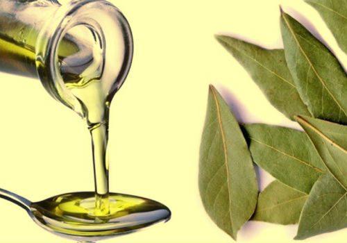 лавровый лист с маслом