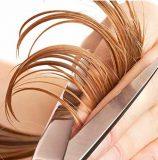 Лунный календарь стрижки волос и косметических процедур на декабрь 2016 года