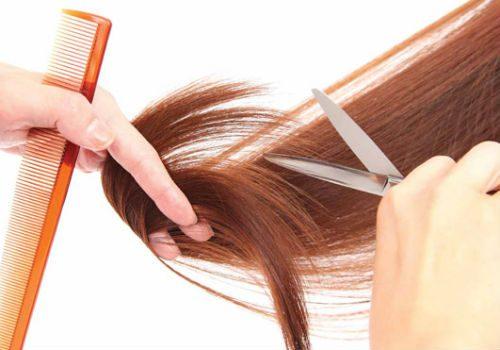 стрижка волос в сентябре