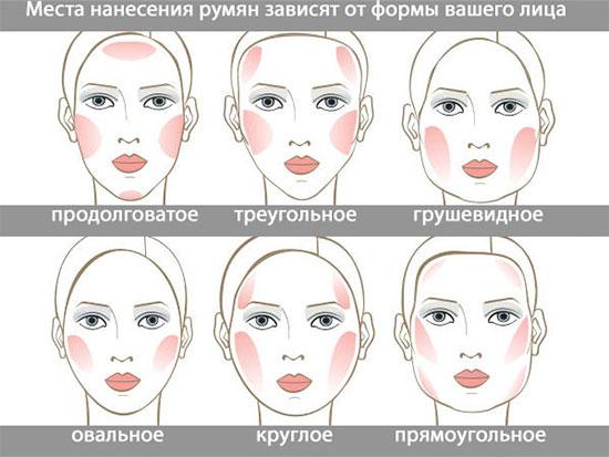 Форма лица и палитра румян